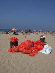 Coastal Cleanup at Santa Monica Pier